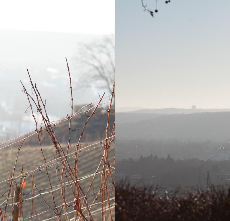 winter-in-oberdollendorf
